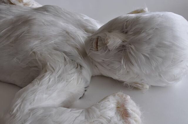 Lucy_Glendinning-Feather_Child