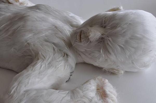 Lucy_Glendinning-Feather_Child